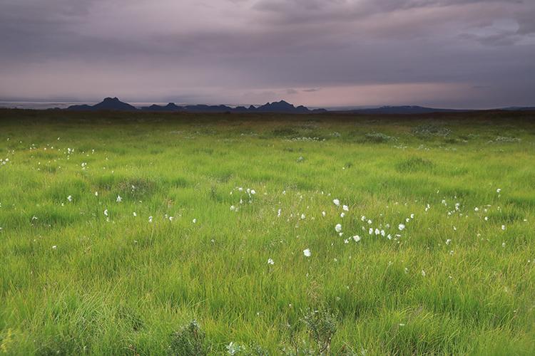 Paysage (Islande).
