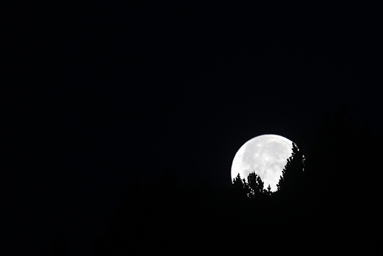 Coucher de lune (Pyrénées-Orientales).