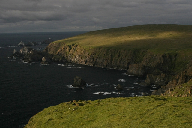 Hermaness, Îles Shetlands (Ecosse).