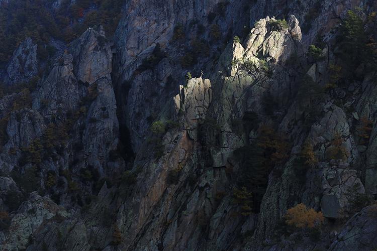 Paysage du Conflent (Pyrénées-Orientales).