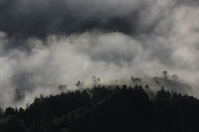 Paysage du Vallespir (Pyrénées-Orientales).