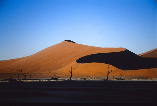 Désert du Namib (Namibie).