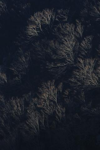 Paysage hivernal du Haut Vallespir (Pyrénées-Orientales).